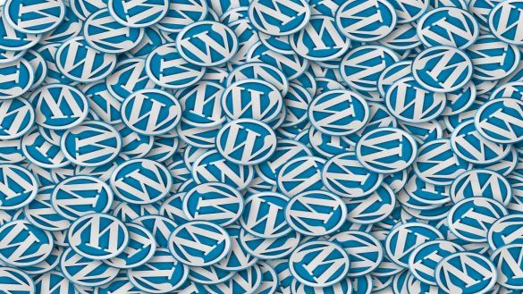 Why Web Developers Prefer WordPress - Content Management System (CMS)