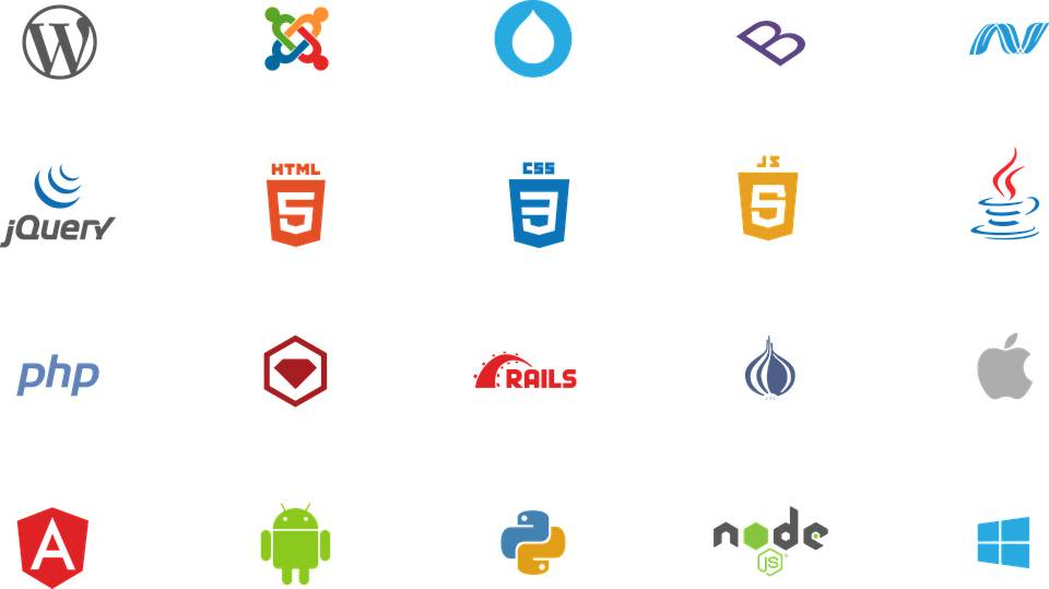 Angular Web Developers